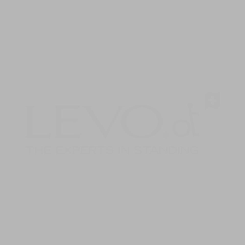 Levo_Logo